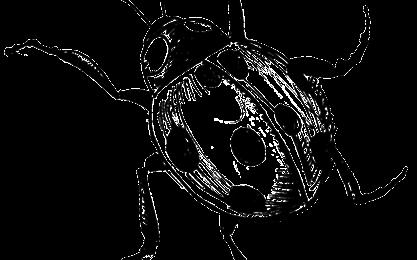 pinKsects (dittiKo antimediatiKo capitolo #1)